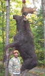 John Drew, 42 inch spread, 880 pounds, 14 points